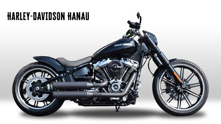 breakout umbau dark 39 n 39 chrome custombike harley. Black Bedroom Furniture Sets. Home Design Ideas
