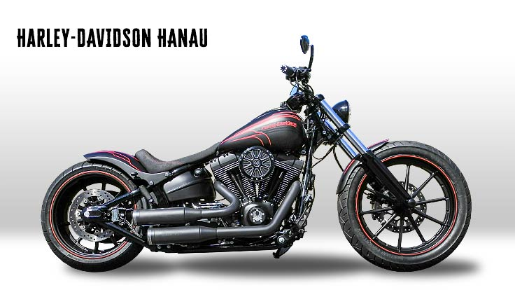 softail 2018 harley davidson hanau. Black Bedroom Furniture Sets. Home Design Ideas