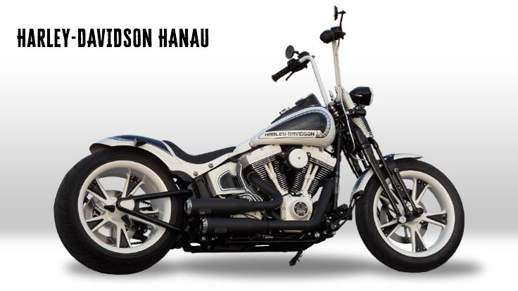 Harley-Davidson Softail Cross Bones Umbau Kontrast Custombike