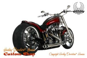 Softail Umbau Purity Custombike von Harley-Davidson Hanausoftail-umbau-purity-04