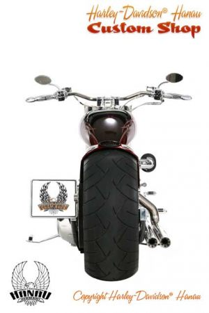Softail Umbau Purity Custombike von Harley-Davidson Hanau