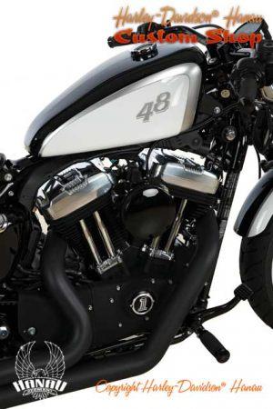 Forty-Eight Umbau 48 - Achtundvierzig Custombike Umbau von Harley-Davidson Hanau